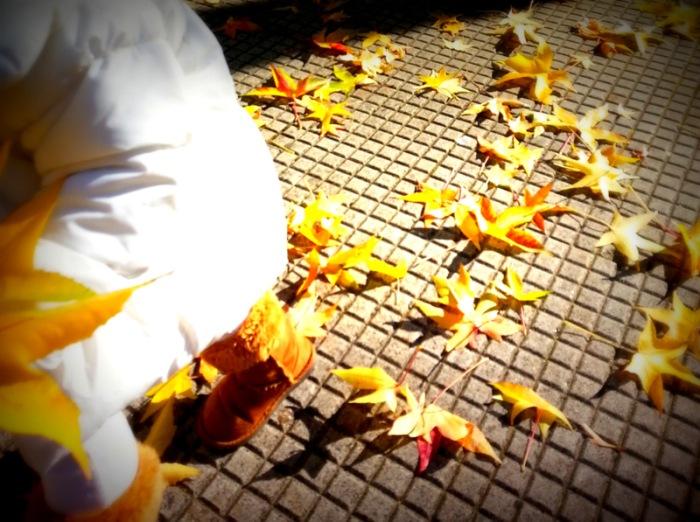 A esfolladora do outono
